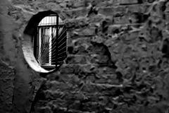 Bo bak stängerna och staketen Fotografering för Bildbyråer