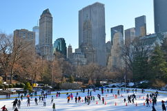 Boże Narodzenia w central park, Nowy Jork Zdjęcie Stock