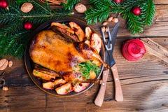 Boże Narodzenie kaczka Obraz Stock