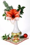 boże narodzenie kwiat Obrazy Stock