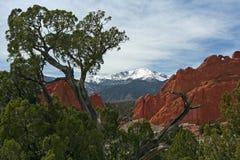 boże ogrodowych szczyt szczupaki Fotografia Stock