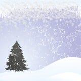 bożego narodzenia futerko tree9 Zdjęcia Stock
