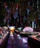 Bożenarodzeniowe iluminacje w parku Fotografia Stock