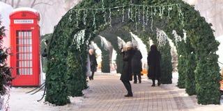 Bożenarodzeniowi wakacje w zima parku Obraz Stock