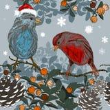 Bożenarodzeniowy bezszwowy wzór z zima ptakami Zdjęcie Stock