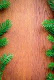 Bożenarodzeniowy jedlinowy drzewo na drewnianej desce Obraz Royalty Free