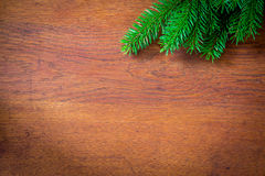 Bożenarodzeniowy jedlinowy drzewo na drewnianej desce Zdjęcia Royalty Free