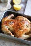 Bożenarodzeniowy kurczak Zdjęcie Royalty Free