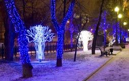 Bożenarodzeniowy Moskwa Obraz Stock