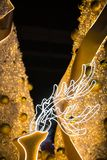 Bożenarodzeniowy reniferowy pokaz Zdjęcie Royalty Free