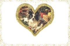 Bożenarodzeniowy szczeniaka rocznika kartka z pozdrowieniami Obraz Stock