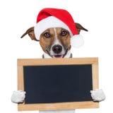 Bożenarodzeniowy sztandaru placeholder pies Zdjęcia Royalty Free