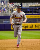 Bo hjort, St Louis Cardinals Fotografering för Bildbyråer