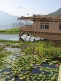Bo i Kashmir royaltyfri foto