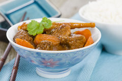 Bo Kho. Vietnamese beef stew cooked with lemongrass, star anise, bay leaf and cassia bark served with rice Royalty Free Stock Images