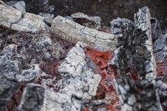 Bo kol brand svart red Fotografering för Bildbyråer