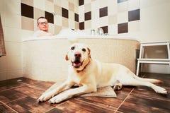 Bo med hunden royaltyfria foton