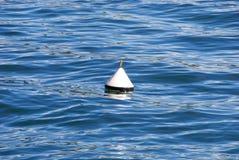 Boa in acqua fotografie stock libere da diritti
