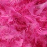 Boa de plumas rosada brillante Foto de archivo libre de regalías
