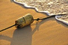 Boa nella sabbia Fotografia Stock