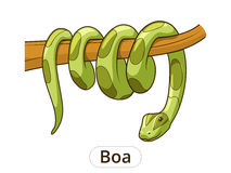 Boa snake cartoon vector illustration Royalty Free Stock Image