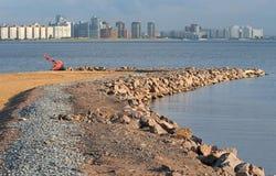 Boa su una spiaggia Fotografia Stock Libera da Diritti