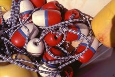 Boa sulle corde Fotografie Stock