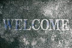 Boa vinda à geada Fotografia de Stock
