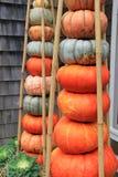 Boa vinda bonita com com diversas abóboras empilhadas na entrada Fotos de Stock Royalty Free