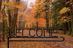Boa vinda a cair Imagem de Stock