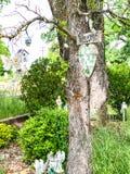 A boa vinda decorou a sepultura no bosque do carvalho fotos de stock