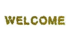 Boa vinda dos girassóis Fotografia de Stock