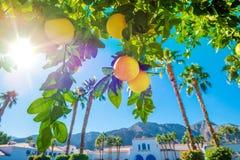Boa vinda em Califórnia Foto de Stock