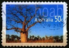 Boab树澳大利亚邮票 免版税库存照片