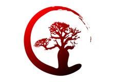 Boab eller isolerad Baobabträdvektor, för trädkontur för mång- färg tropisk symbol för begrepp för logo royaltyfri illustrationer