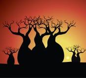 Boab & x28; Baobab& x29; Boom het Vector Schilderen Stock Fotografie