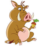Boar with acorn Royalty Free Stock Photos