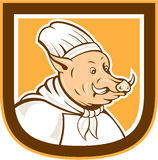 Boar Chef Cook Shield Cartoon Royalty Free Stock Images