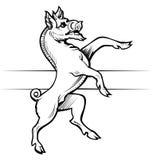 Boar emblem Stock Image