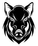 Boar head Royalty Free Stock Photography