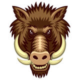 Boar Royalty Free Stock Images
