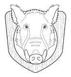 Boar head in wood shield. Contour. Hunting trophy. Stuffed taxidermy wild boar head with big tusks in wood shield. Line-art illustration  on white Royalty Free Stock Photo