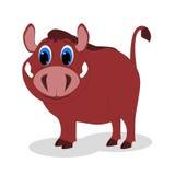 Boar, hog Royalty Free Stock Images