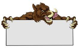 Boar Mascot Sign Stock Photos