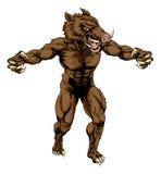 Boar scary sports mascot Royalty Free Stock Photo