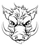 Boar sports mascot head. A mean looking boar animal character or sports mascot Royalty Free Stock Photos