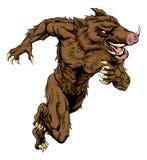 Boar sports mascot running Royalty Free Stock Photo