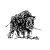 Boar with sword Stock Images