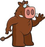 Boar Waving Stock Image