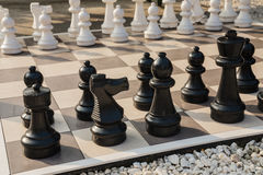 The board of chess in the garden. Stock Photo